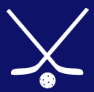 Floor Hockey